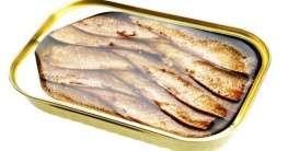 Spanische Fischkonserven